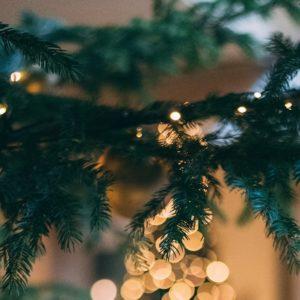 Weihnachten im Whitman 2020